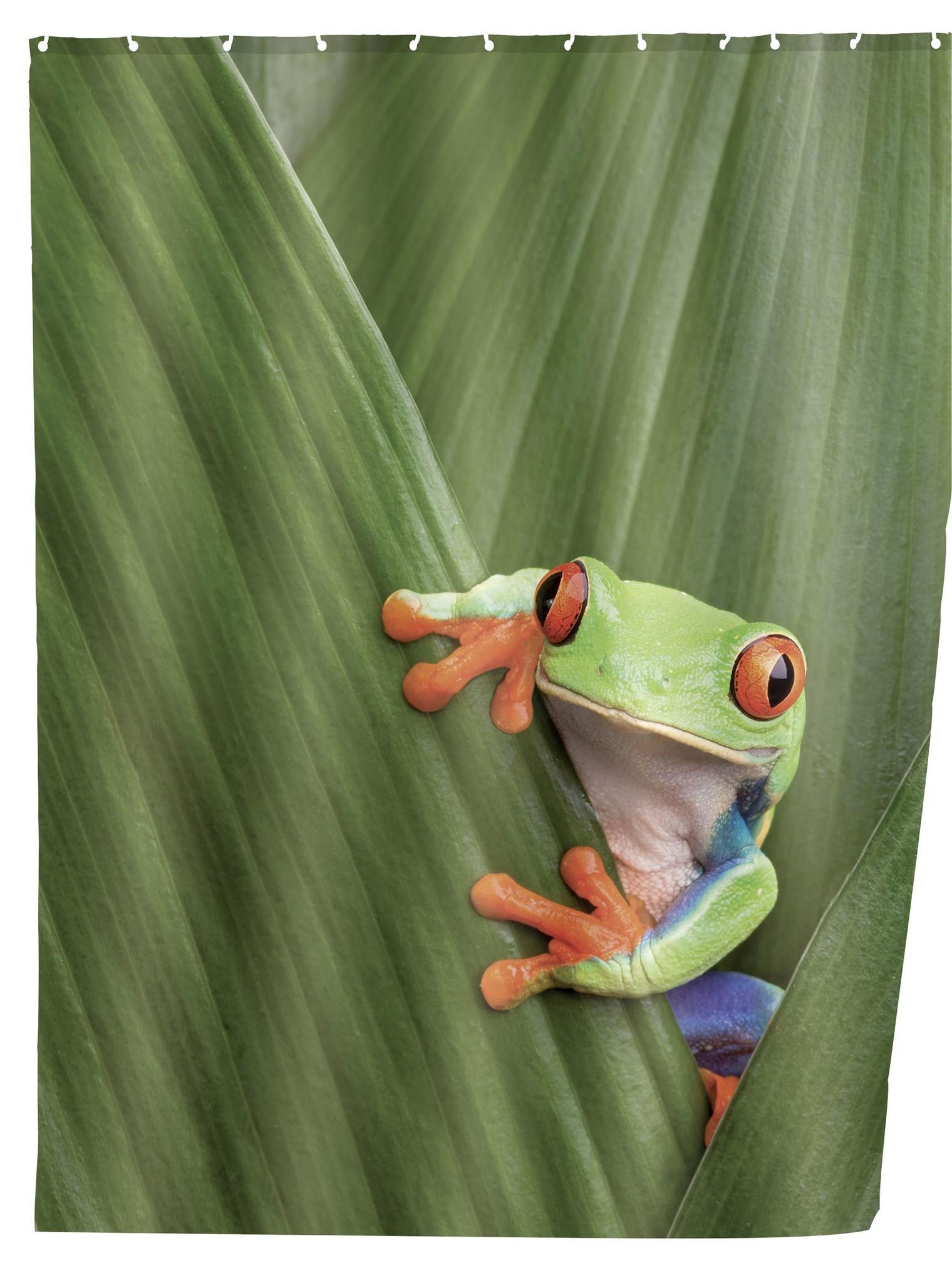 Duschvorhang Frog, 180 x 200 cm, waschbar