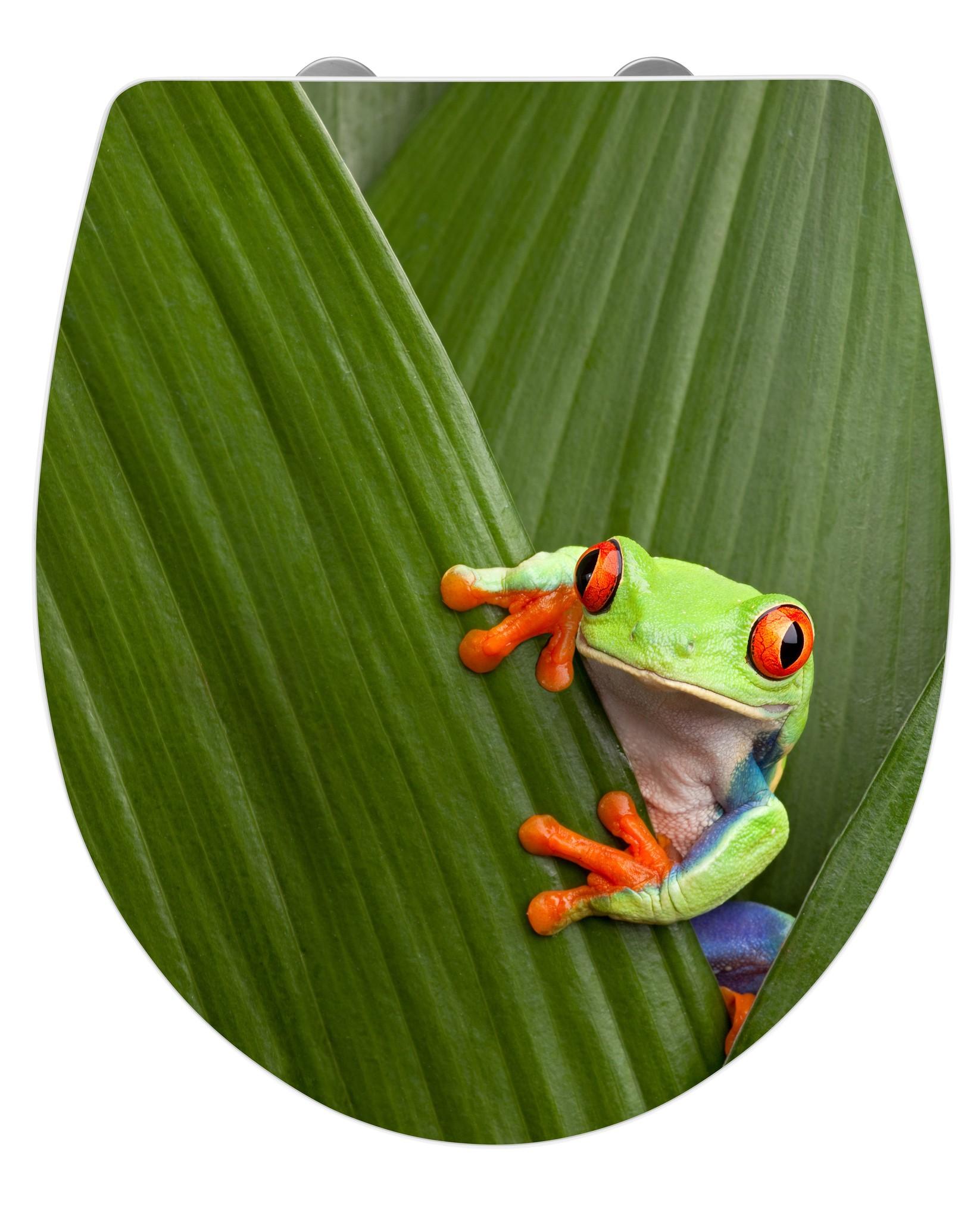 Wenko WC-Sitz Hochglanz Acryl Frog, Absenkautomatik, Fix-Clip Hygiene Befestigung, Duroplast