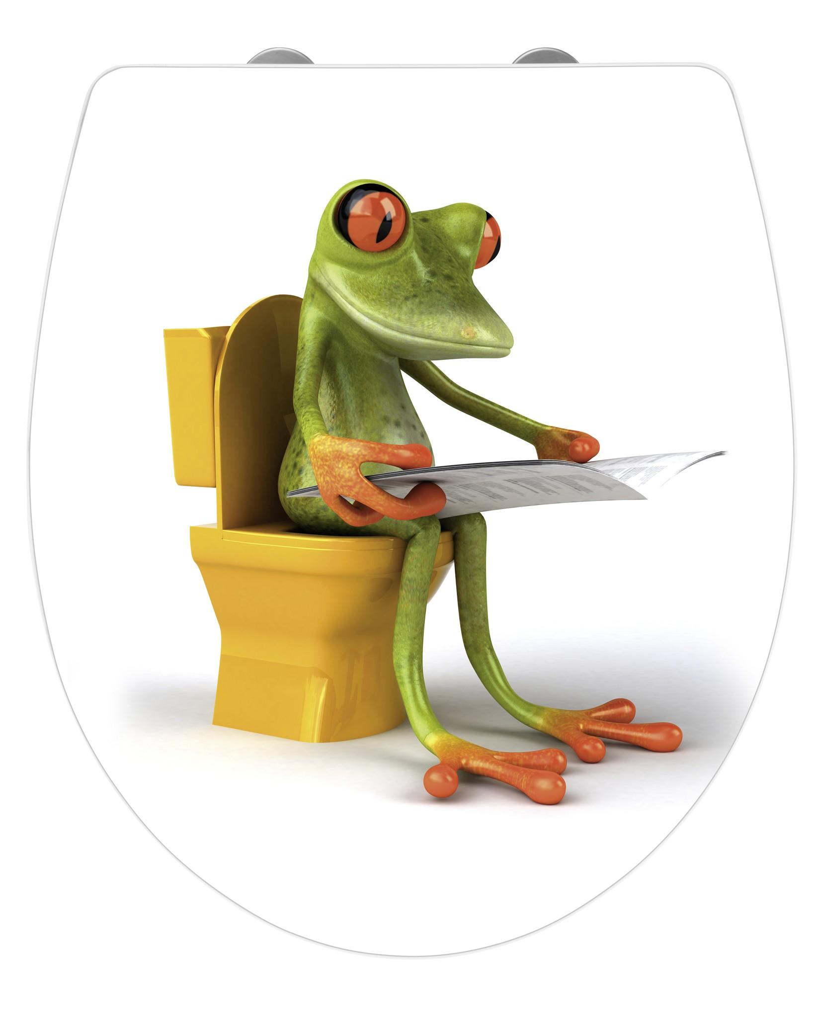 WC-Sitz Hochglanz Acryl Frog News, Absenkautomatik, Fix-Clip Hygiene Befestigung