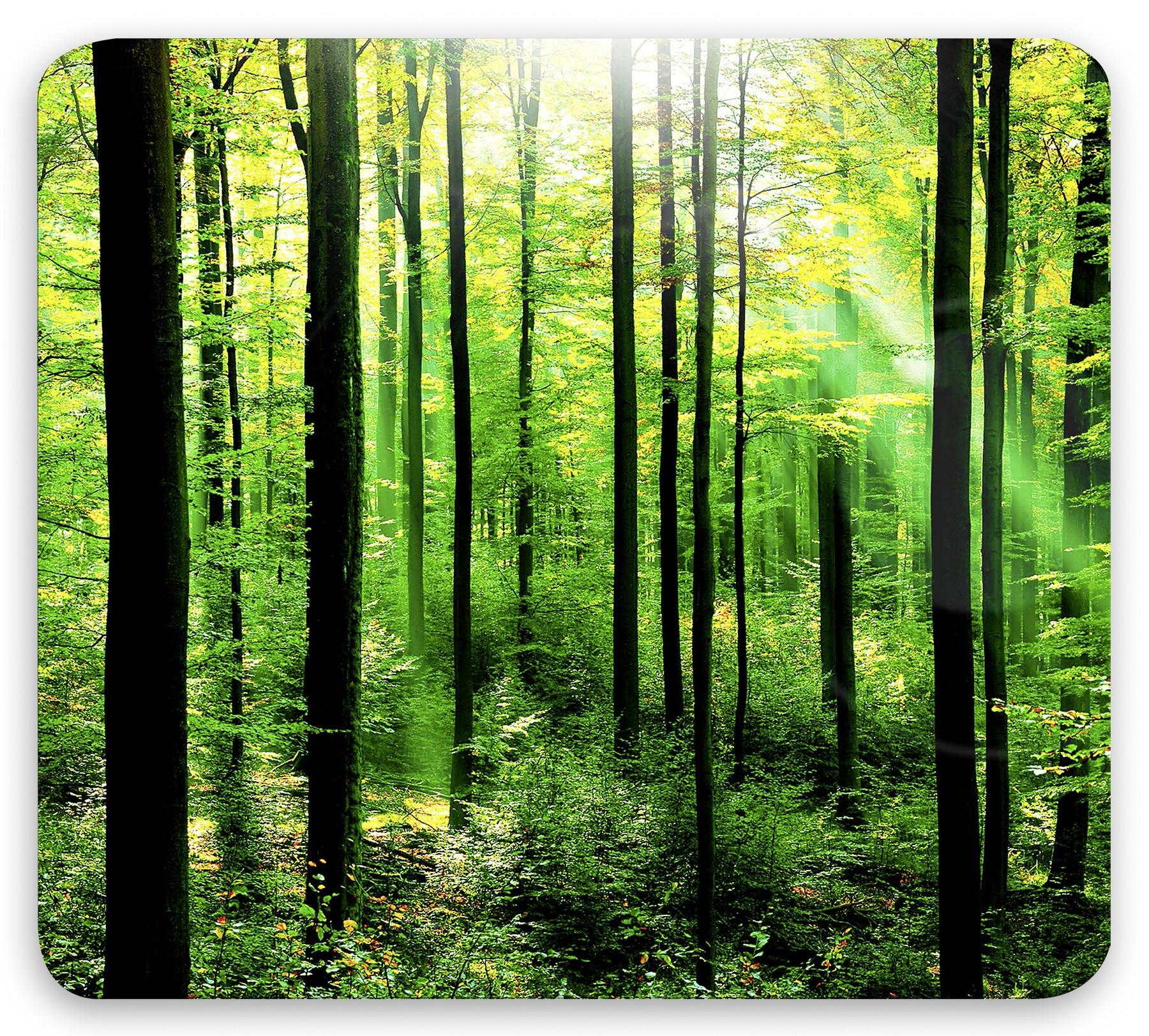 Multi-Platte Wald, für Glaskeramik Kochfelder, Schneidbrett