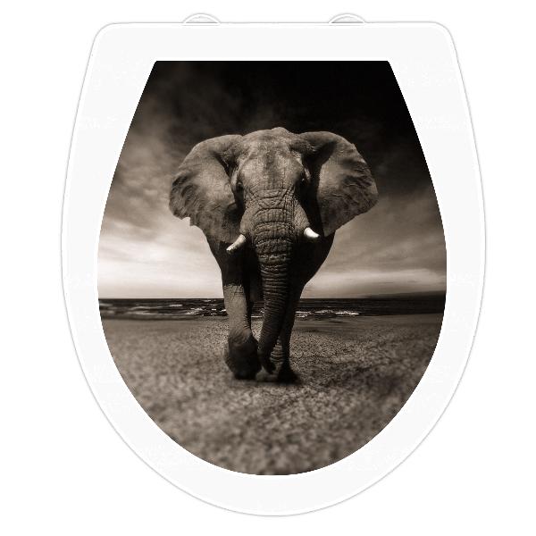 wc sitz aufkleber sticker elefant. Black Bedroom Furniture Sets. Home Design Ideas