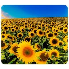 Multi-Platte Sonnenblumenfeld, für Glaskeramik Kochfelder, Schneidbrett