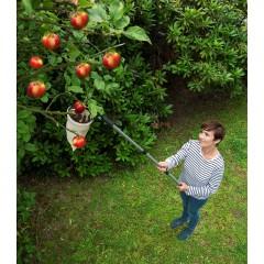 Wenko Obstsammler XL mit Teleskopstiel, Obstpflücker mit Teleskopstiel