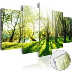 Artgeist Acrylglasbild - Green Glade [Glass]