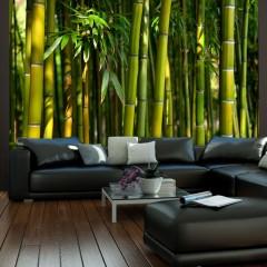 Artgeist Fototapete - Asiatischer Bambuswald