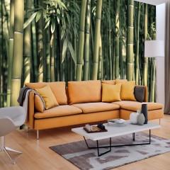 Artgeist Fototapete - Bamboo Exotic