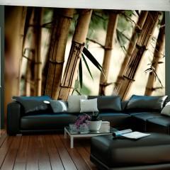 Artgeist Fototapete - Fog and bamboo forest