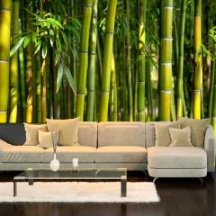 Artgeist Fototapete - Oriental Garden