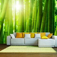 Basera® Fototapete Asienmotiv 100403-89, Vliestapete
