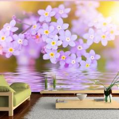 Artgeist Fototapete -  Violet Petals In Bloom
