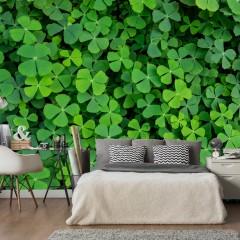 Artgeist Fototapete - Green Clover