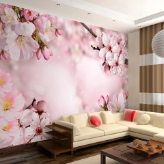 Artgeist Fototapete - Spring Cherry Blossom