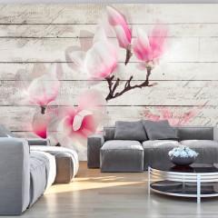 Artgeist Fototapete - Gentleness of the Magnolia