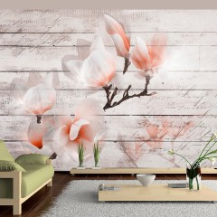 Artgeist Fototapete - Subtlety of the Magnolia