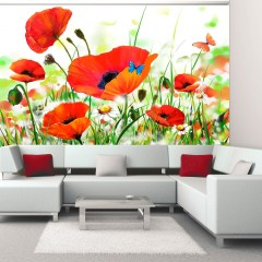 Artgeist Fototapete - Country poppies