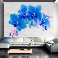 Artgeist Fototapete -  Blue excitation