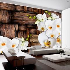 Basera® Fototapete Orchideenmotiv f-A-0132-a-b, Vliestapete