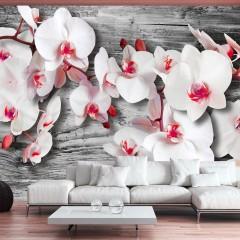 Artgeist Fototapete - Callous orchids