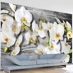 Basera® Fototapete Orchideenmotiv 10110906-43, Vliestapete