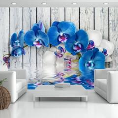 Artgeist Fototapete - Cobaltic orchid