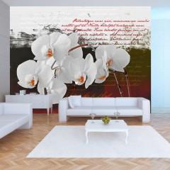 Basera® Fototapete Orchideenmotiv 10110906-7, Vliestapete
