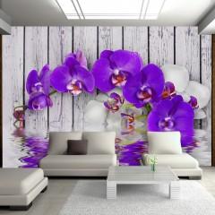 Basera® Fototapete Orchideenmotiv 10110906-116, Vliestapete