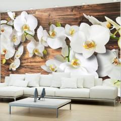 Basera® Fototapete Orchideenmotiv 10110906-44, Vliestapete