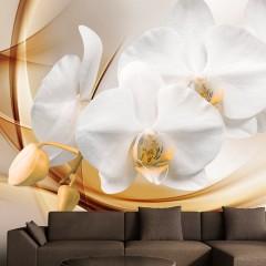 Basera® Fototapete Orchideenmotiv b-A-0213-a-b, Vliestapete