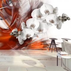 Artgeist Fototapete - Orchid on fire II
