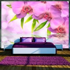 Artgeist Fototapete - Orchids in lilac colour