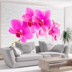 Artgeist Fototapete - Pink excitation