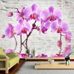 Basera® Fototapete Orchideenmotiv b-A-0228-a-b, Vliestapete
