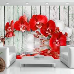 Artgeist Fototapete - Ruby orchid