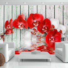 Basera® Fototapete Orchideenmotiv 10110906-6, Vliestapete