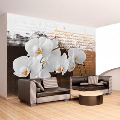 Basera® Fototapete Orchideenmotiv 10110906-8, Vliestapete