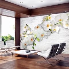 Basera® Fototapete Orchideenmotiv b-A-0089-a-b, Vliestapete