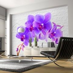 Basera® Fototapete Orchideenmotiv 10110906-100, Vliestapete