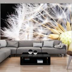 Artgeist Fototapete - Fluffy dandelion