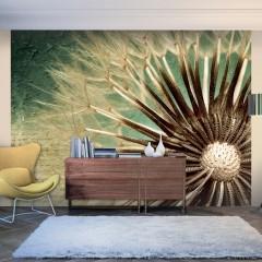Artgeist Fototapete - Focus on dandelion