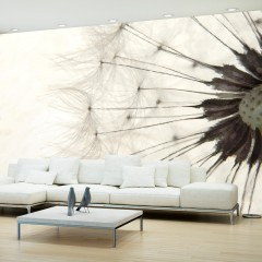 Artgeist Fototapete - White Dandelion