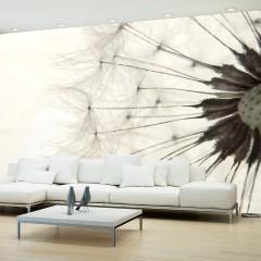 Basera® Fototapete Pusteblumenmotiv 10110903-4, Vliestapete