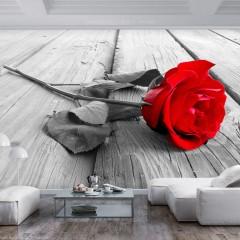 Artgeist Fototapete - Abandoned Rose