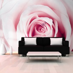 Artgeist Fototapete - Rose maze