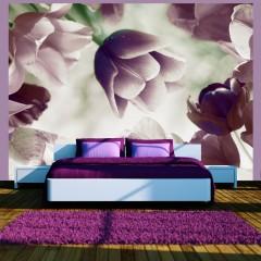 Artgeist Fototapete - Heavenly tulips