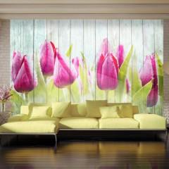 Artgeist Fototapete - Tulips on white wood