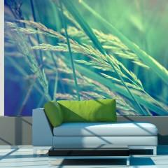 Basera® Fototapete Wiesenmotiv 100403-176, Vliestapete