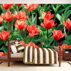 Artgeist Fototapete - Painted flowers