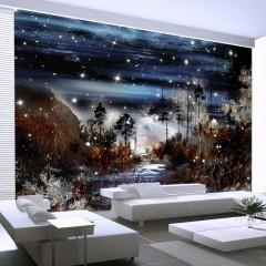 Artgeist Fototapete - Nacht im Wald