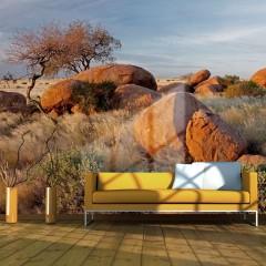 Artgeist Fototapete - Afrikanische Aussichten, Namibia
