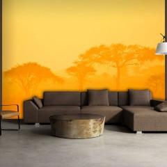 Artgeist Fototapete - Orange savanna